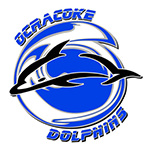 Ocracoke Dolphins